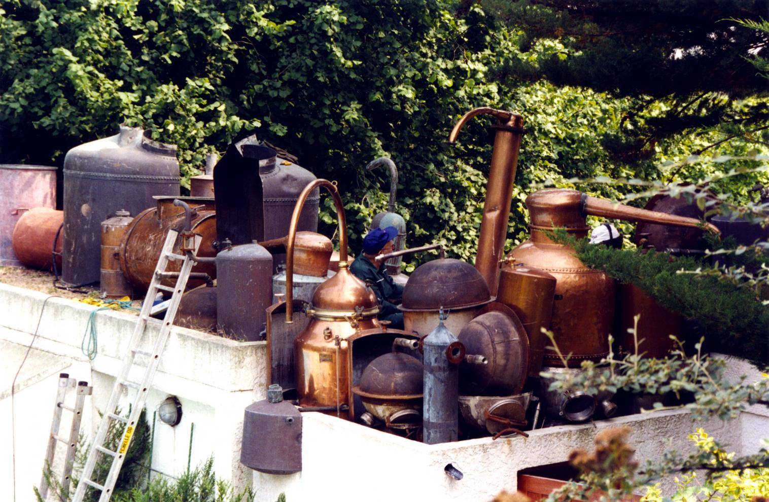 Homage to hieronymus bosch mus e arman for Bosch jardin des delices